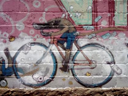 Coati en Biicicleta - detalle