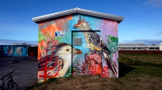 Birdhouse - Streetart Capital of Iceland
