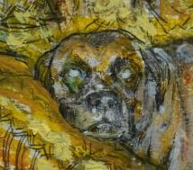 detalle pintura dona - pesk - loeschbor - boxer - dog - perro - retrato - portrait - pastel oleo